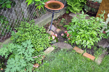 I always provide water for the birds, keeps the cats happy.  :)