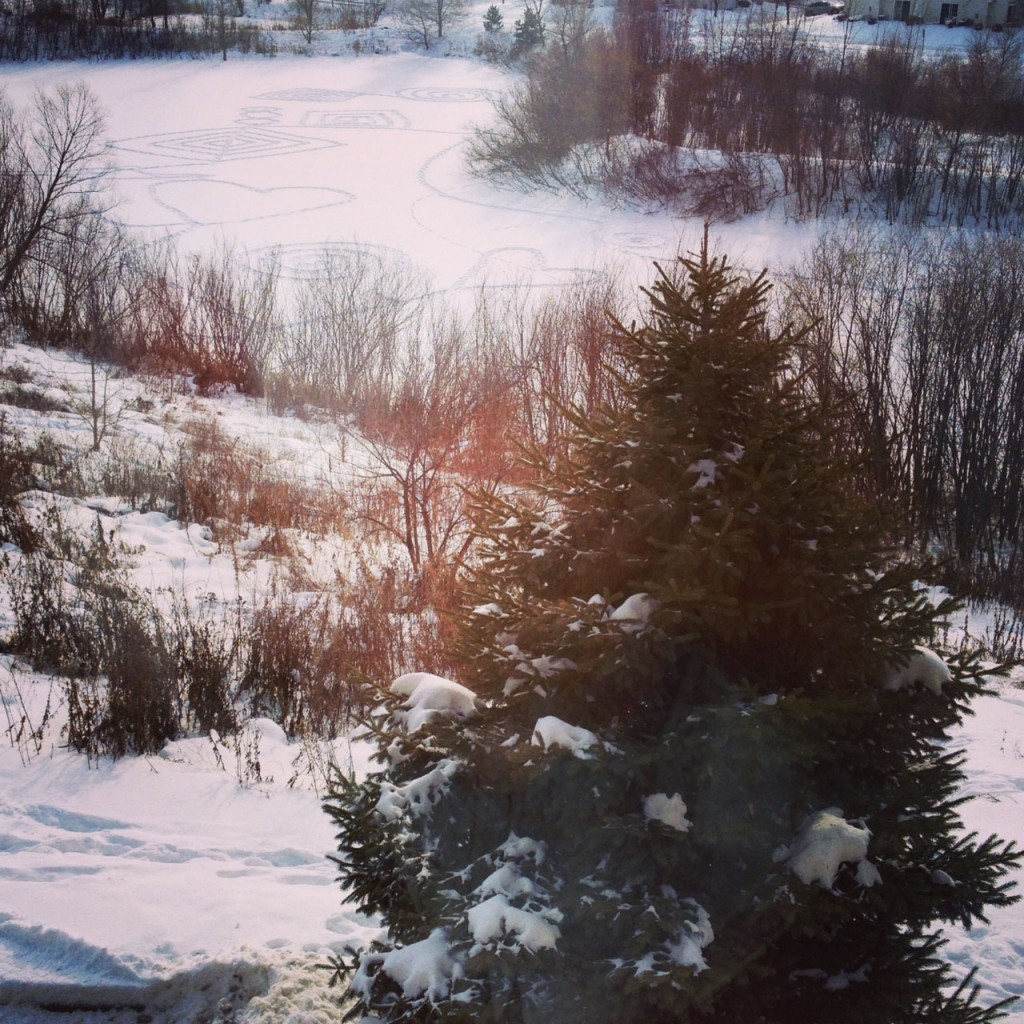 The view out of my Mom's window in Minnesota.
