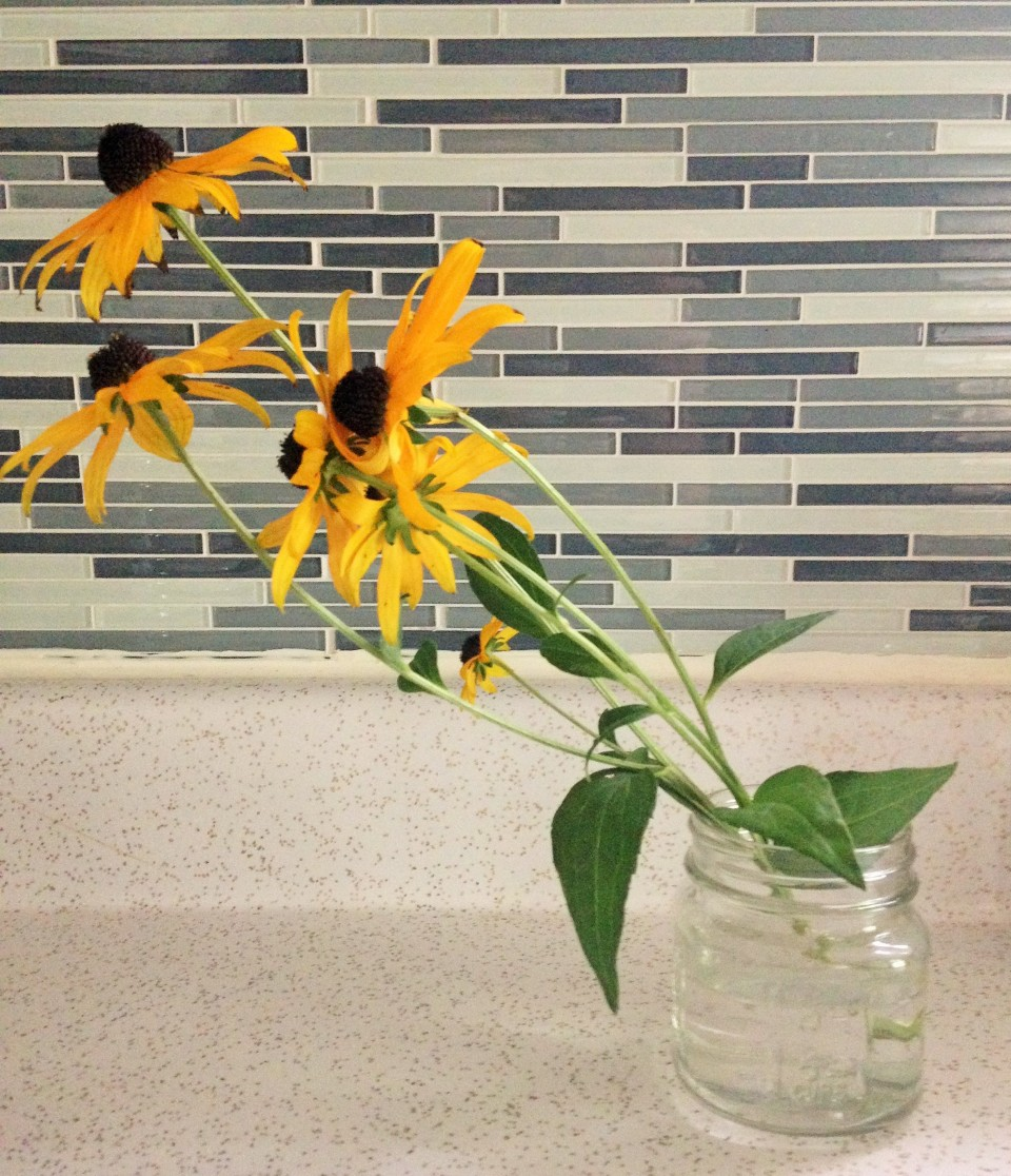 cut black eyed susans